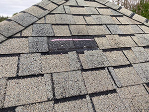 shingles to be repaired